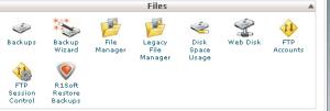 file cPanel